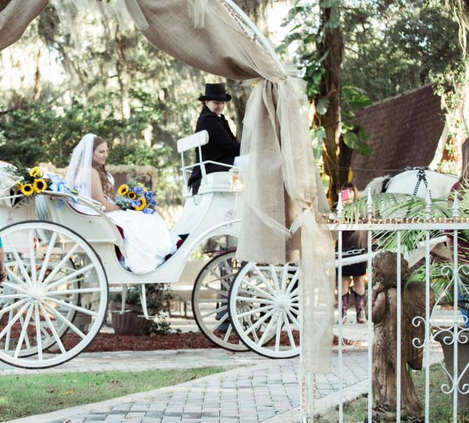 Bride being delivered by our horse and carriage ]
