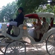 Carriage ride for the happy couple